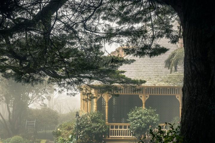 Darleys Garden 03