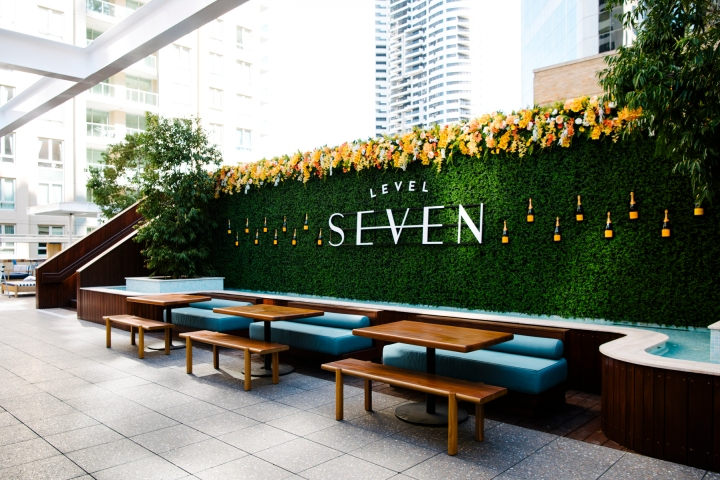 Level Seven Ivy Wall 1